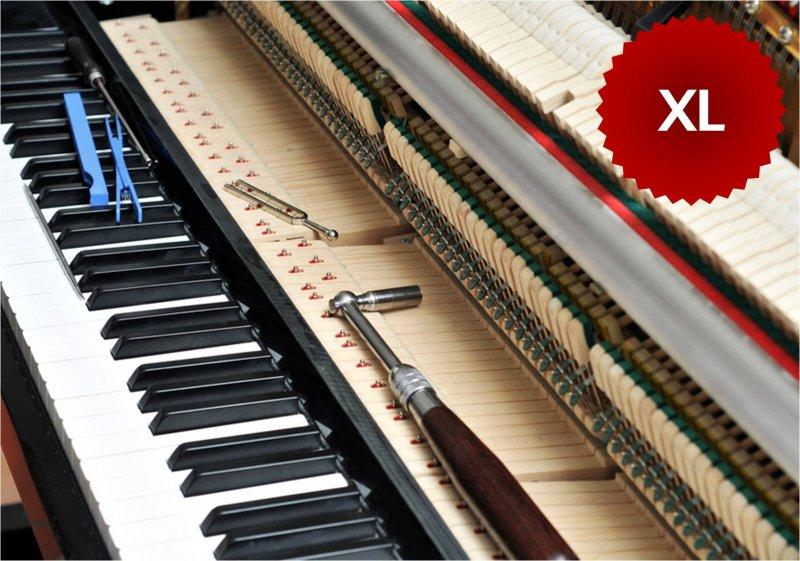 Klavierstimmung oder Flügelstimmung XL PLZ 3xxxx
