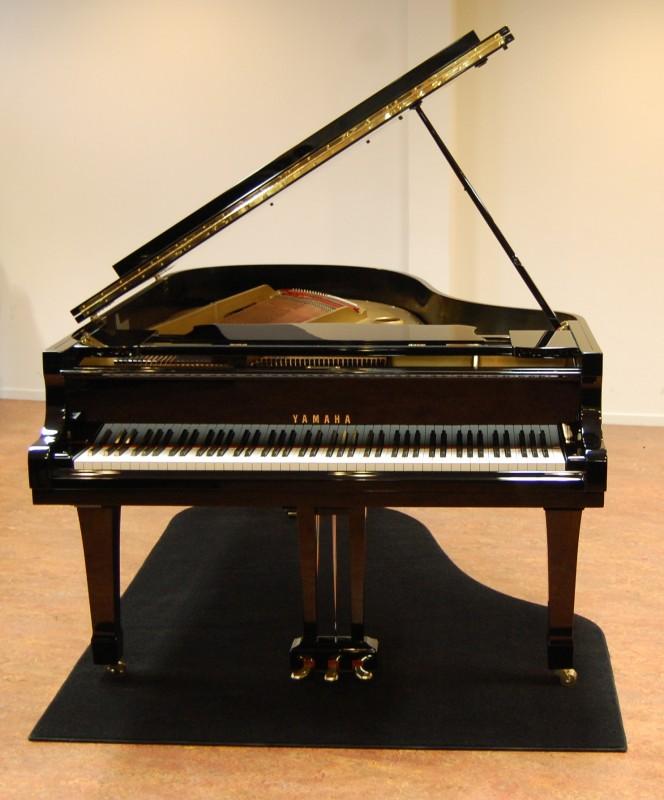 Pianocarpet Flügelteppich bis 230 cm auf Maß